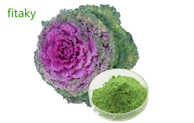 Factory Supply Organic Kale Powder