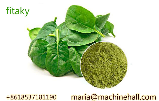 100% Pure Organic Spinach Powder Price