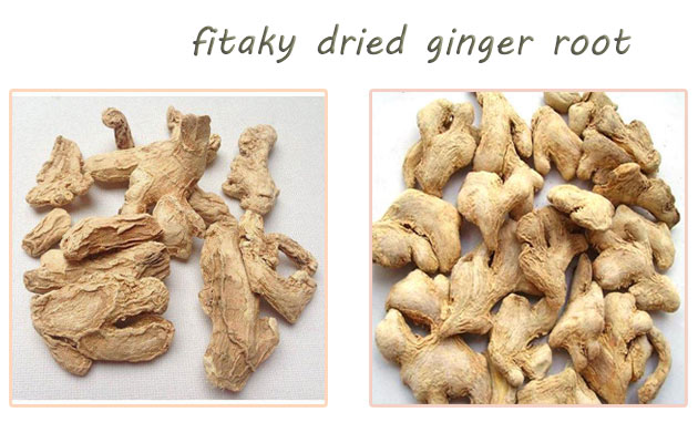 Dried Ginger Root Wholesale Price