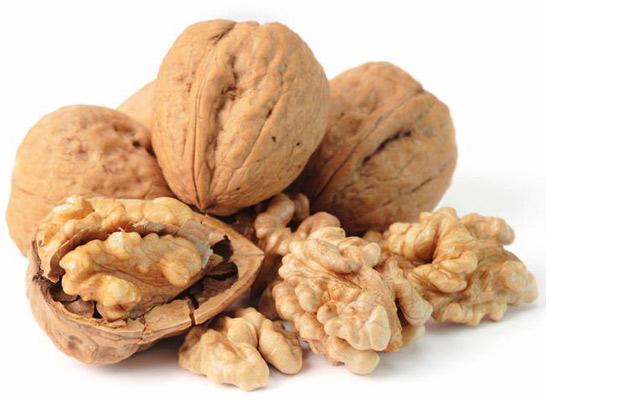 Paper Shell Walnut Hot Sale|Chinese Walnut Wholesale Price