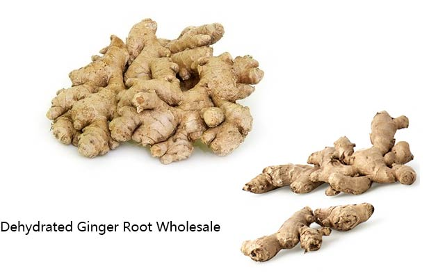 China Natural Ginger Product Wholesal