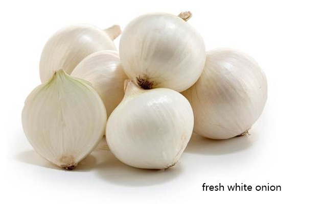 Bulk Fresh White Onion Wholesale Pric