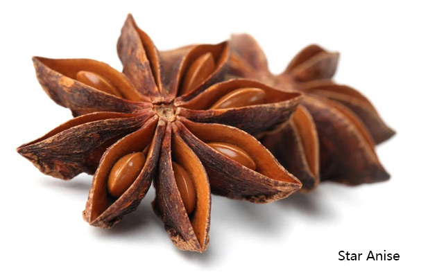 China Natural Star Anise Wholesale Pr