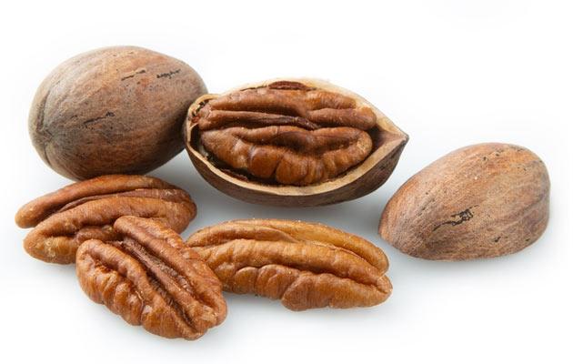 Bulk Pecan Nuts Wholesale Price