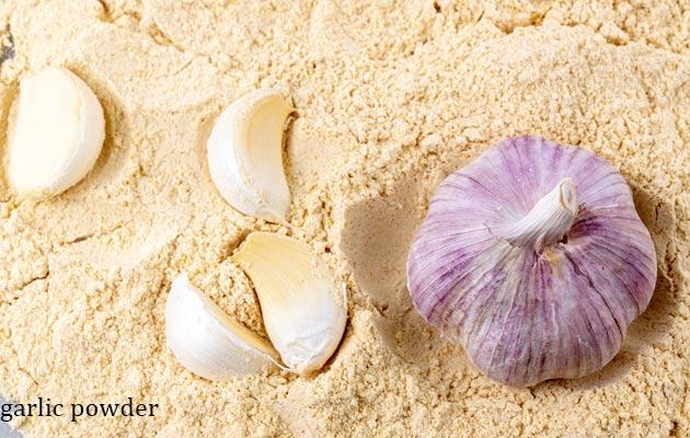 Dried Garlic Powder Wholesale Price