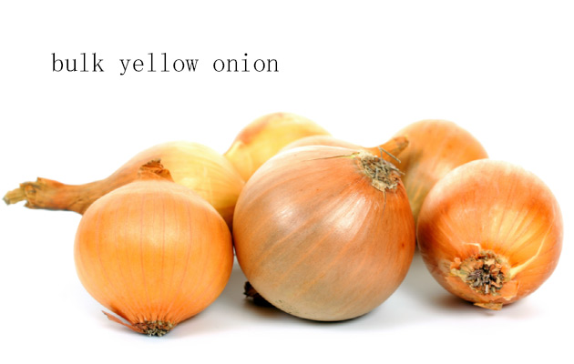 yellow onion wholesale price