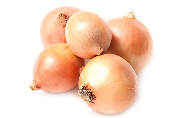 fresh onion wholesale price